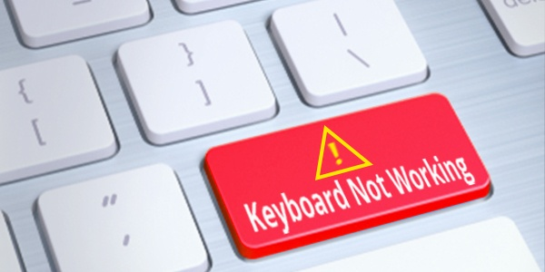 Apple usb keyboard windows 10 driver