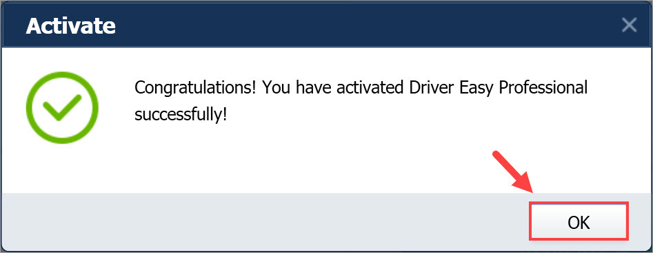 Driver Easy Pro activated