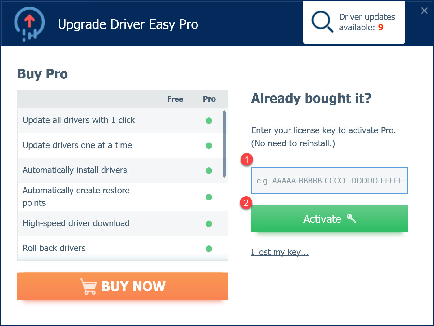 Upgrade to Driver Easy Pro enter license