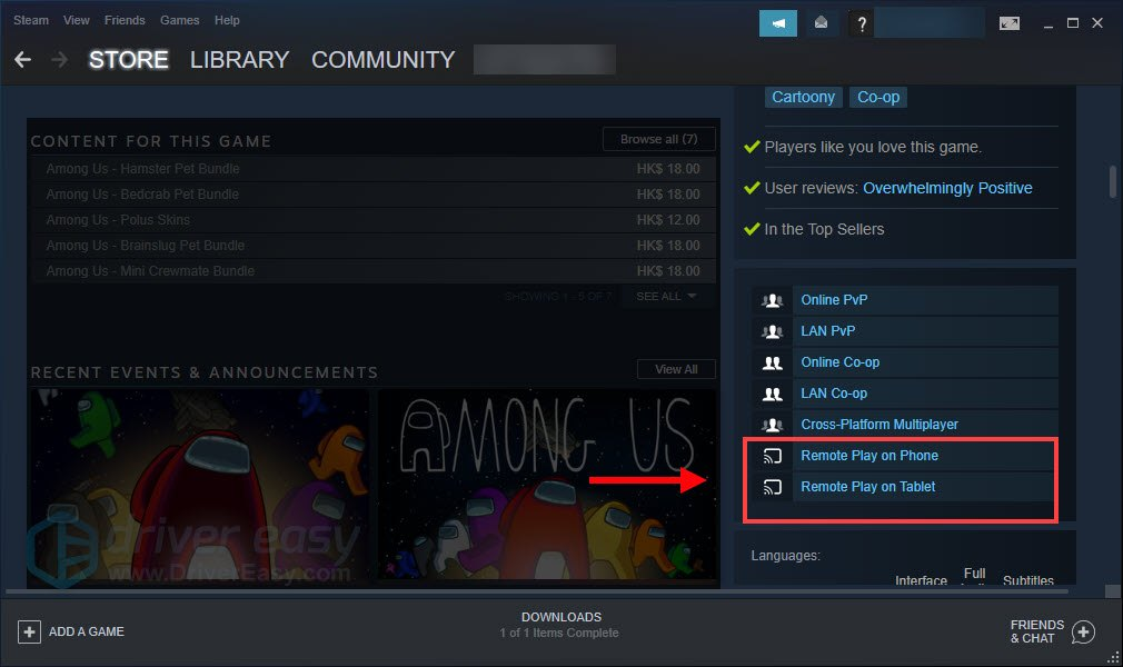 check if a game supports Steam Remote Play or not