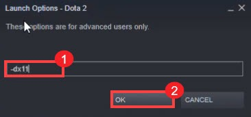 change launch options for Dota 2 to fix the error Change Rendering API