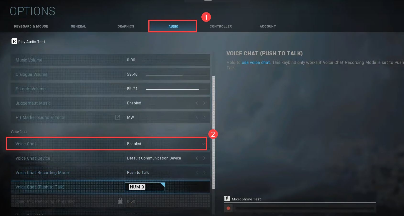 voice chat enabled