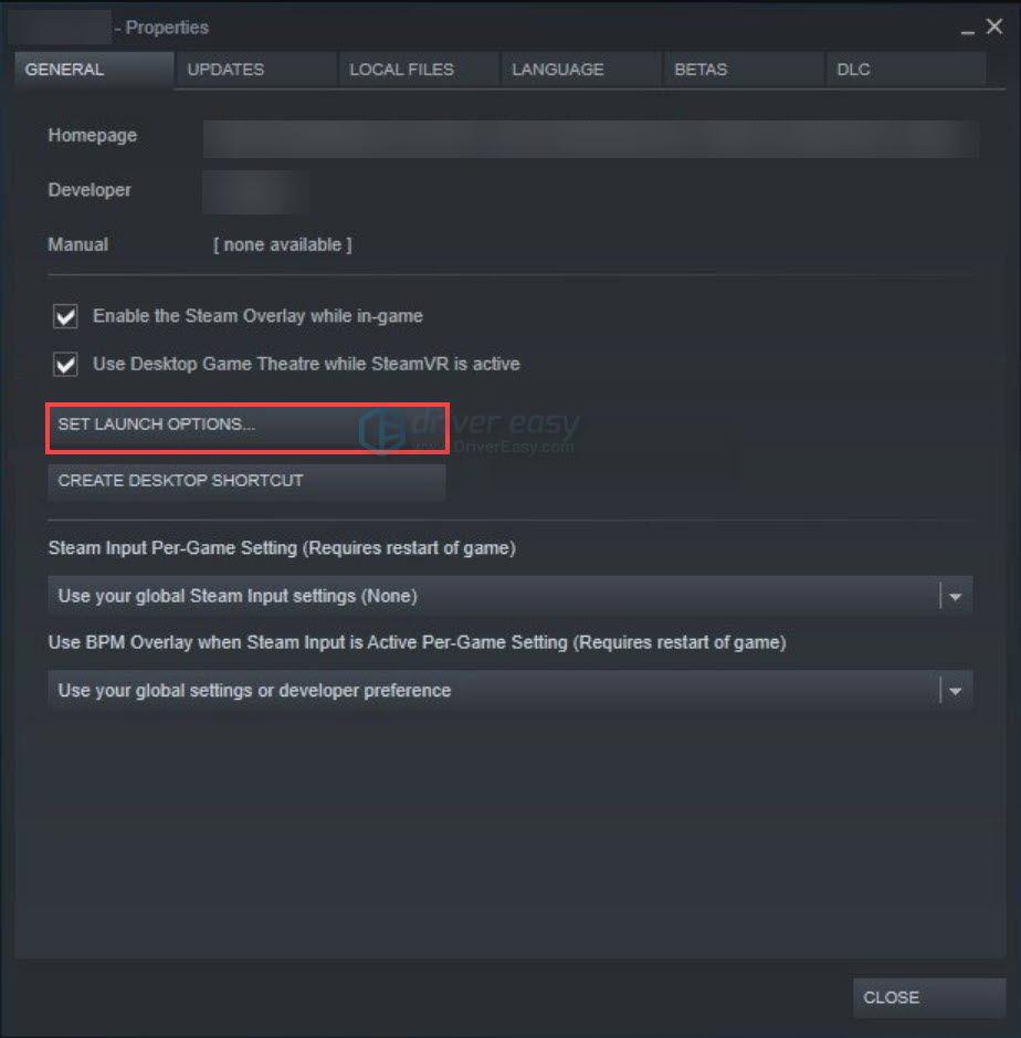Steam set launch options