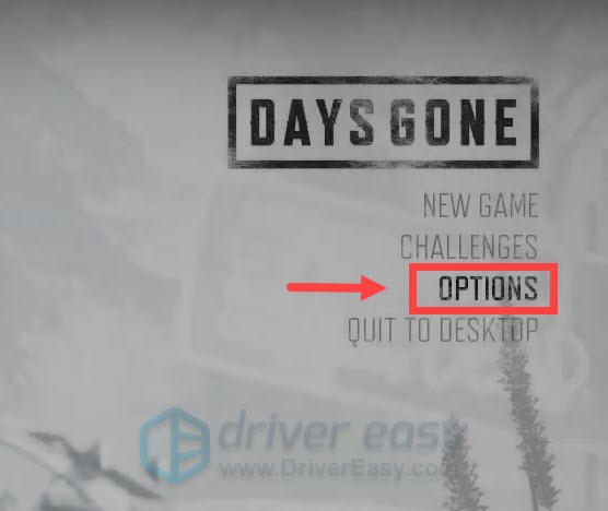 Days Gone adjust in-game settings
